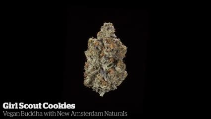 Girl Scout Cookies       Vegan Buddha with New Amsterdam Naturals