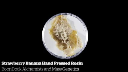 Strawberry Banana Hand Pressed Rosin           BoonDock Alchemists and Mass Genetics