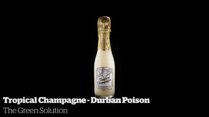 Tropical Champagne - Durban Poison             The Green Solution