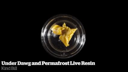 Under Dawg and Permafrost Live Resin           Kind Bill