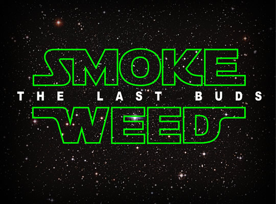 Tシャツ No.288 「SMOKE WEED THE LAST BUDS (スモークウィード 最後のバッズ)」